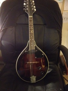 tony shepherds mandolin